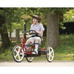 三輪車は飛び立つ自由を与えてくれます。
